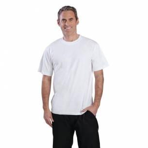 Camiseta blanca-Z093A103-L